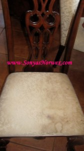 cleaning dirty upholstery with Norwex