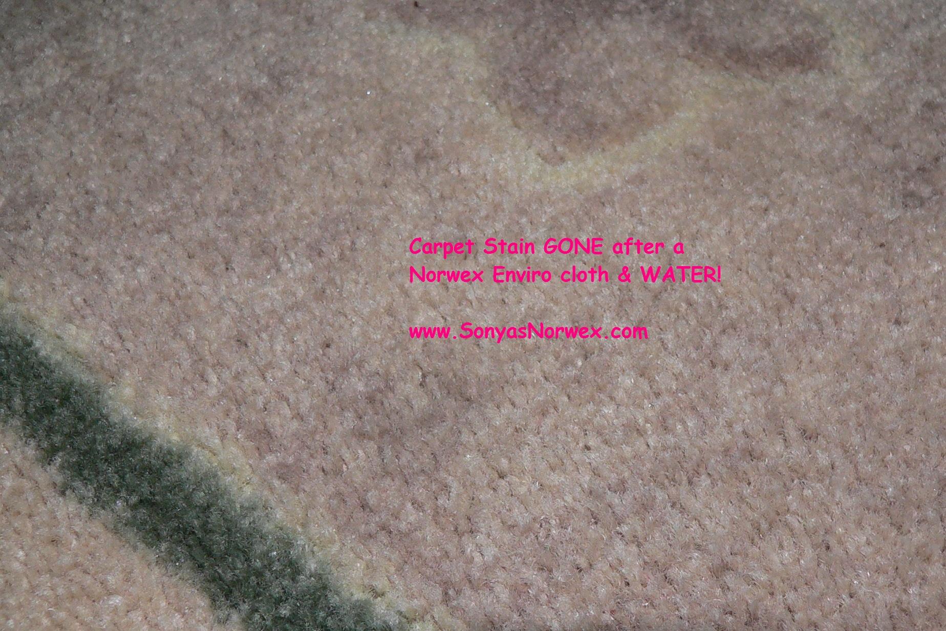 Norwex Cloth | Sonya Eckel's Norwex Blog